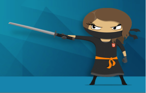 Web Developer Ninja